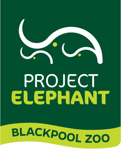 Project Elephant | Blackpool Zoo Logo